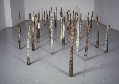 "Imprint.  Banff Centre for the Arts, Other Gallery.  50 components.  Up to 32"" height.  2003"