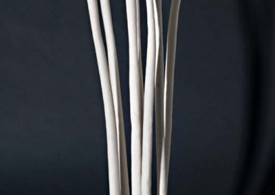 Reclamation. 7 components   Porcelain.  2012.  Photo credit - Cathie Ferguson