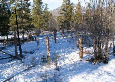 Stand.  Installation. Yukon Territory.  2006